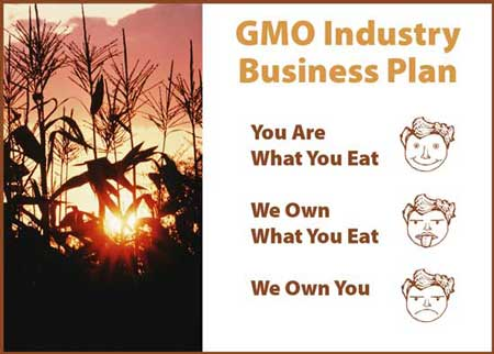 GMO Industry Business Plan WEB