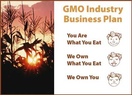 GMO Industry Business Plan WEB